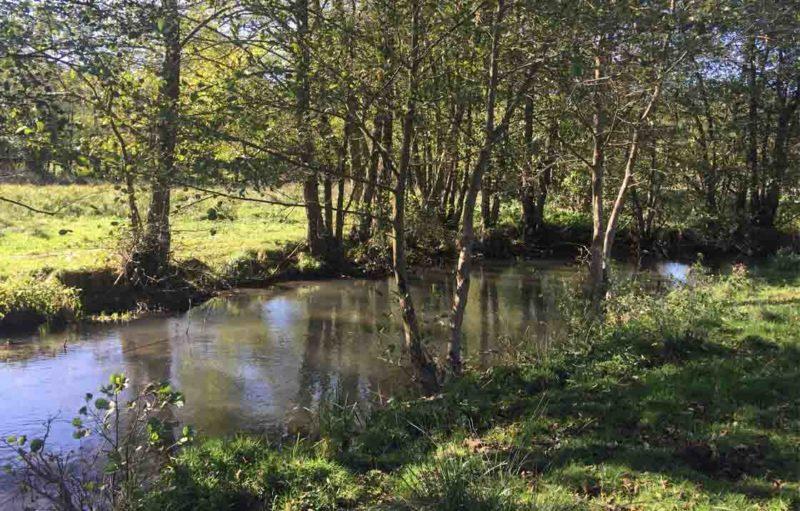 Image de rivière